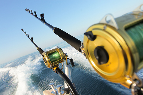 Stanley�s Deep Sea Fishing