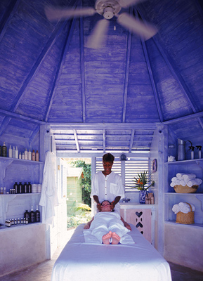 Elemental Nature Facial for Self-Renewal
